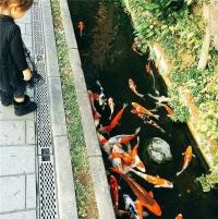 Nhật Bản nơi những rãnh nước thải trở thành hồ thuỷ cảnh đẹp không tưởng