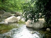 Những khu du lịch sinh thái tại Đà Nẵng mang lại cảm giác lạ